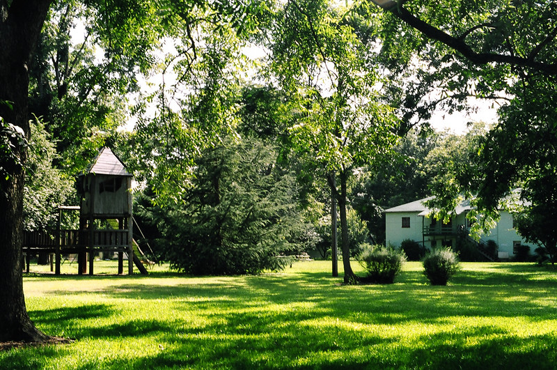 Yard at Koinonia Farms