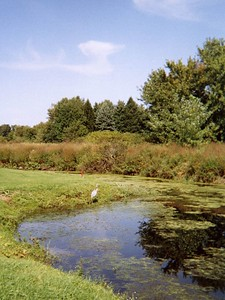 Golf Outing 20-Sep-2003