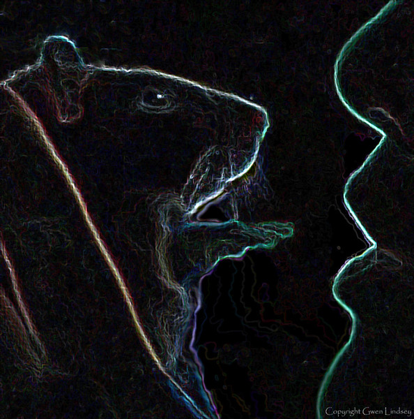 """Graphical rendering of sweet Chancy (""""Chance-ee"""") and I having a nose-to-nose conversation."""