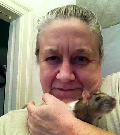 When Willow came to me at about 1.5 years of age, she had never been touched or handled by a human. Using Positive Reinforcement I helped her to love to hop onto my shoulders and go for rides. Over time, I helped her come down onto my arms and enjoy staying in place.