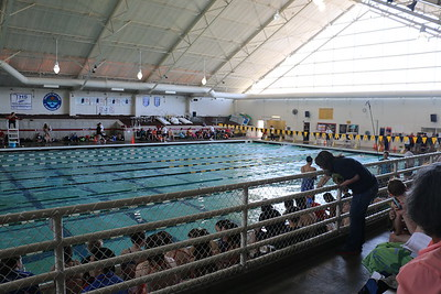 HAYDEN'S SWIM MEET - May 2015