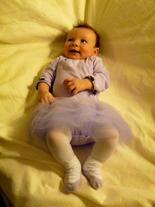 Cambria -- a beautiful purple ballerina
