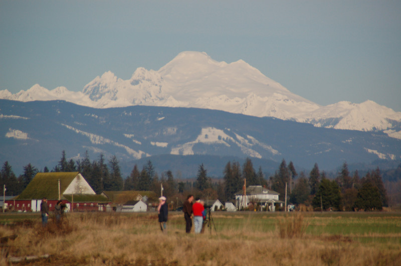 Mt. Baker has an incredible snow pack  this year.