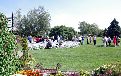 Brians Wedding