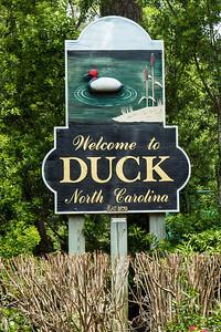 Duck14JN14_8103