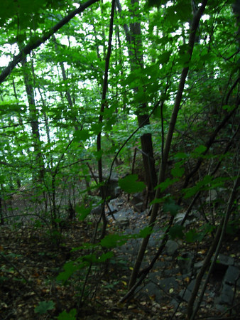 Hiking w/ Lin & Ken - 08/06