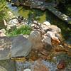 Waterfall Area