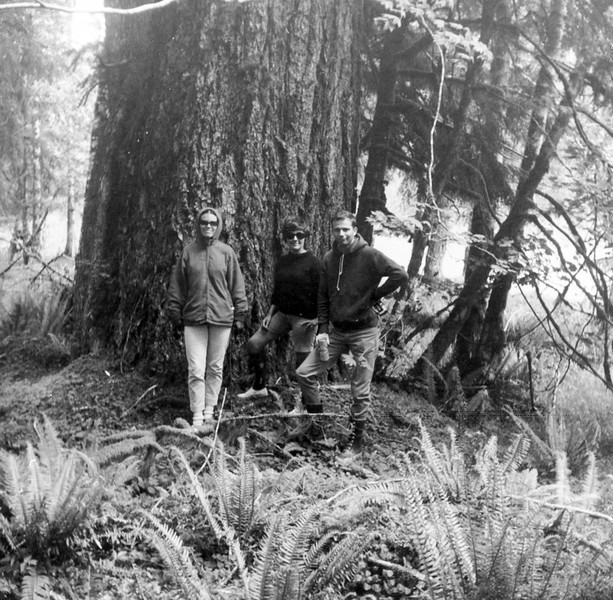 1966–American River?