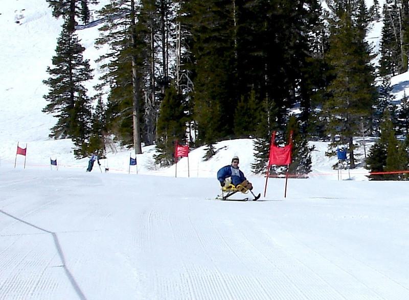 Adaptive Skier 4