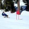 Adaptive Skier 5