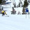 Adaptive Skier 2