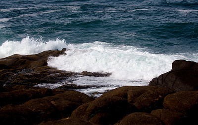 More of Oregon's distinctive waves on rocks.
