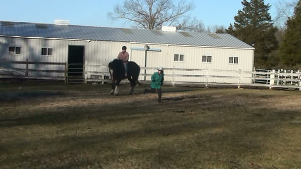 Trixy, an American Shire Mare <br /> Keith riding! Karen running and jumping!<br /> photo 12/25/2009