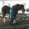 20081225-Trixy-Karen3