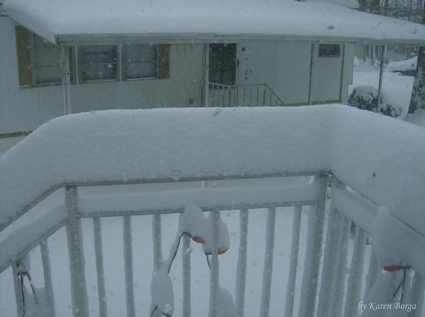 daytime snow covered railing,<br /> February 10, 2010 Blizzard
