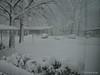 Side yard.<br /> February 10, 2010 Blizzard