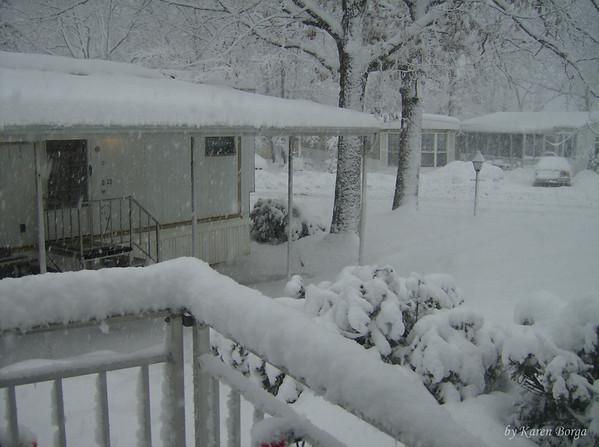 side yard,<br /> February 10, 2010 Blizzard