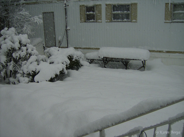 My side yard.<br /> February 6, 2010 Blizzard