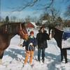 Trixy, Karen, Keith & Dickens<br /> Snow Card