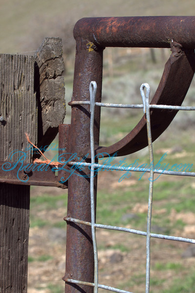 This gate has repurposed spring tooth farm implement parts used as diagonal bracing ,nothing goes to waste on the Ranch.