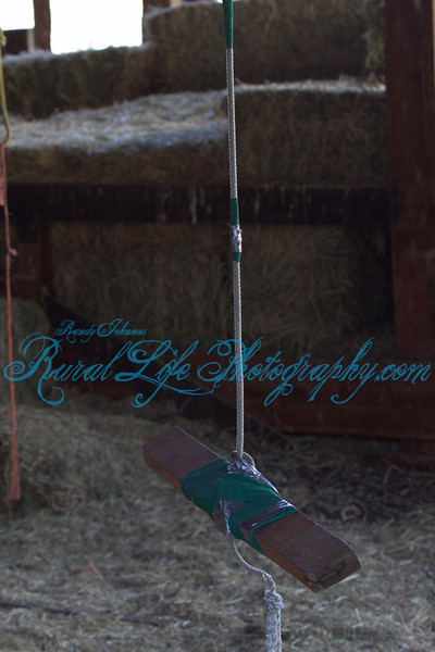The swing in the old Barn, I bet this swing could tell some stories
