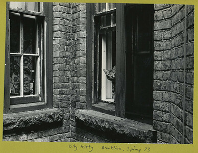 Photographs 1973_0028
