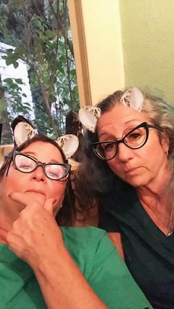 Kitty Kat's 2017 visit