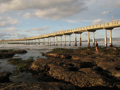 Low Tide (08 Dec)