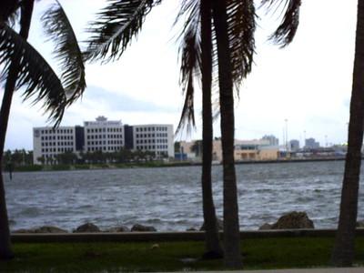 Windy Miami view