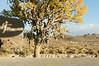 TNRG Moab 2009 20