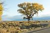 TNRG Moab 2009 19