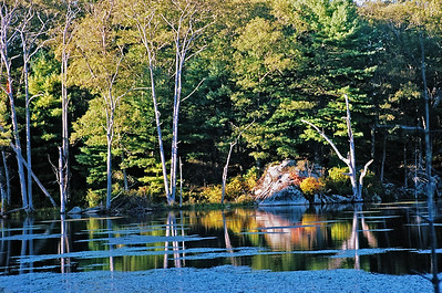 Pond in West Gloucester in late afternoon