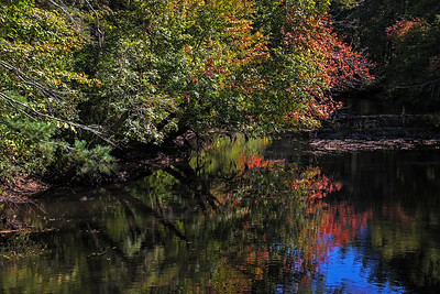 Marnie shot--early Autumn color along Ipswich river