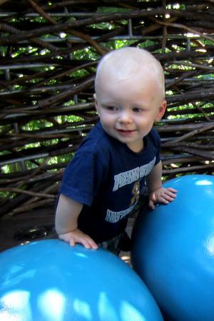 Morris Arboretum Aug 2012