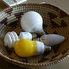 A basket full of energy savings. © 2010 Doug Moench