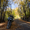 Went for a ride by myself on Saturday the 19th, up to Trinity County to find fall colors along Coffee Creek.