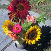 We stop to give Mom Some flowers from our yard in Idaho