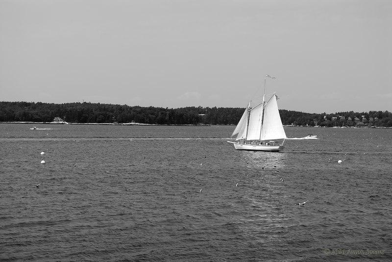 Boat in harbor.