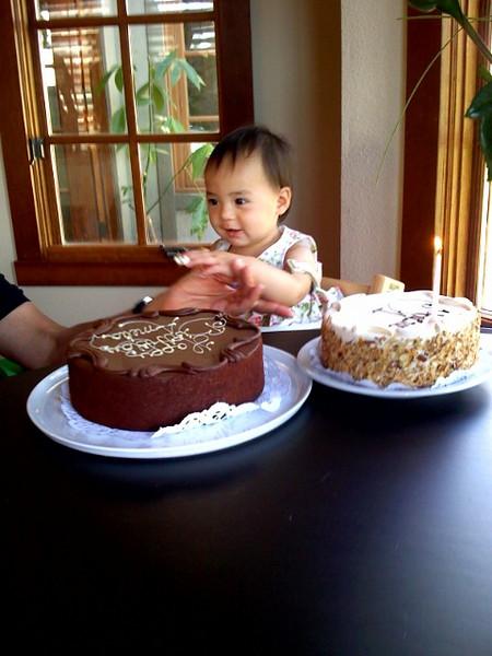 Amelia's 1st Birthday 9-15-2007