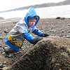 Lewis attempting to move a large rock so he can look for crabs under it.