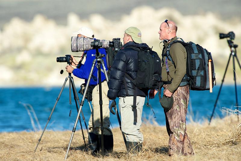 Mono Lake, tufa formations, osprey, Jerry Dodrill, Dan
