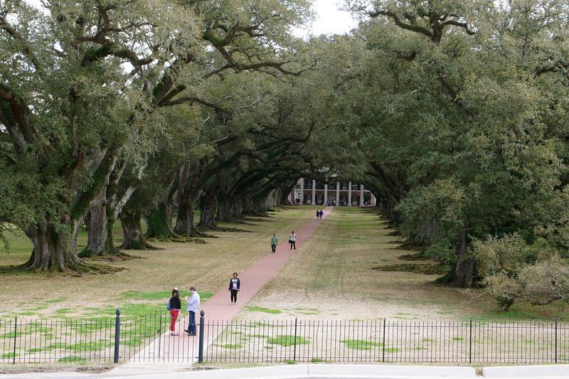 Oak Alley Plantation in Vacherie Louisiana