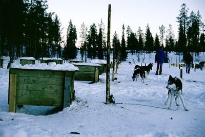 lapland-digi-2001-010