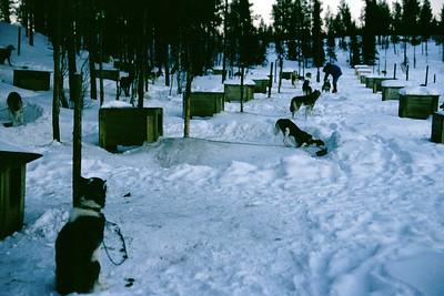 lapland-digi-2001-011