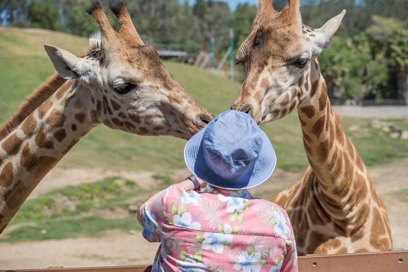 Safari Park 20180421