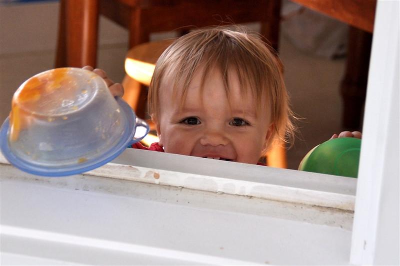 Peek-a-boo through the window!