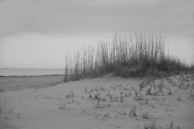 Sandbridge -- April 2011