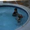 Boys just swimming. :)