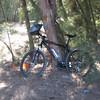 My new bike. :)