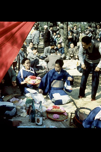 Settevig-Japan 59